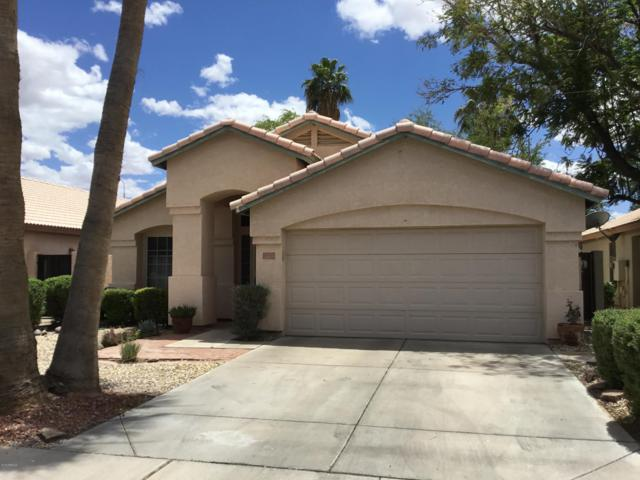5945 W Geronimo Court N, Chandler, AZ 85226 (MLS #5921566) :: Revelation Real Estate