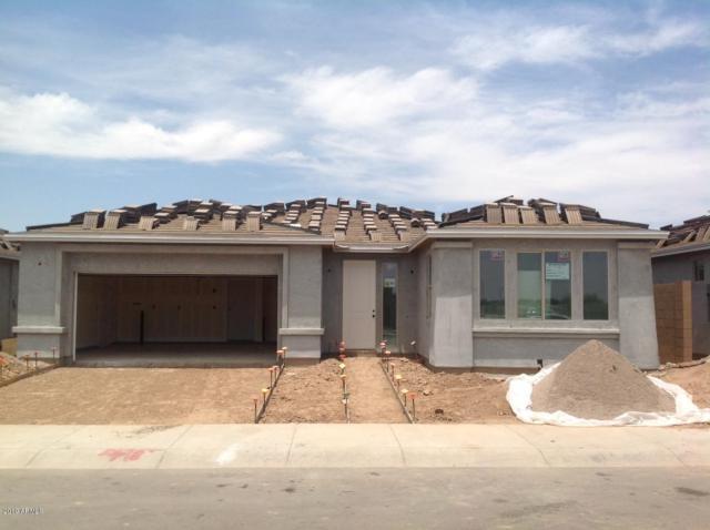 1520 W Sonoqui Boulevard, Queen Creek, AZ 85140 (MLS #5921995) :: Revelation Real Estate
