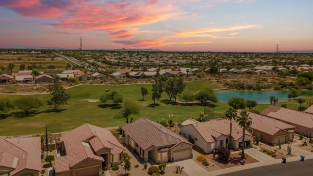 18563 N 116TH Drive, Surprise, AZ 85378 (MLS #5923687) :: CC & Co. Real Estate Team