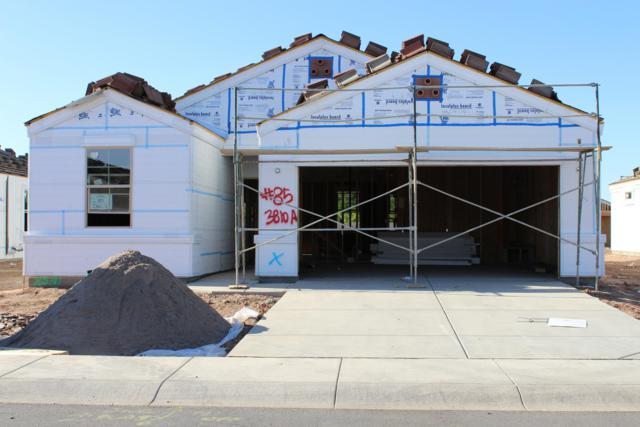 1134 E Viola Court, Casa Grande, AZ 85122 (MLS #5924730) :: Occasio Realty