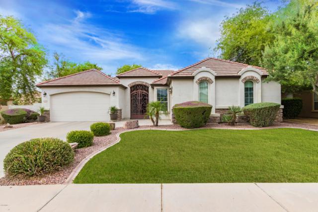 420 E Canyon Way, Chandler, AZ 85249 (MLS #5925119) :: CC & Co. Real Estate Team
