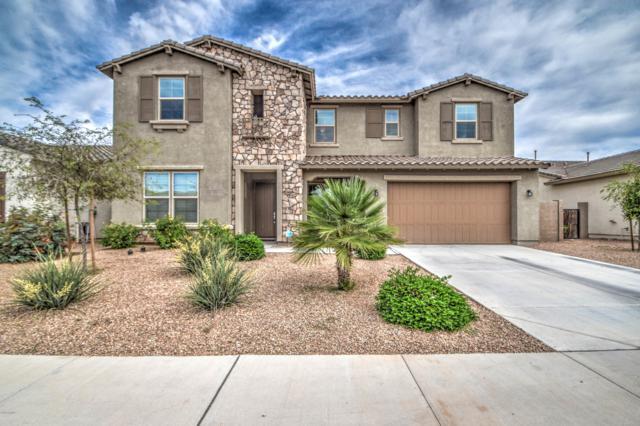 2842 E Muirfield Street, Gilbert, AZ 85298 (MLS #5925406) :: CC & Co. Real Estate Team