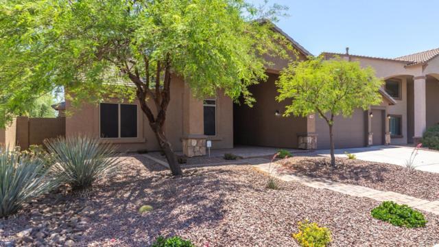 4309 W Dorsaneo Lane, Anthem, AZ 85087 (MLS #5926003) :: The Daniel Montez Real Estate Group