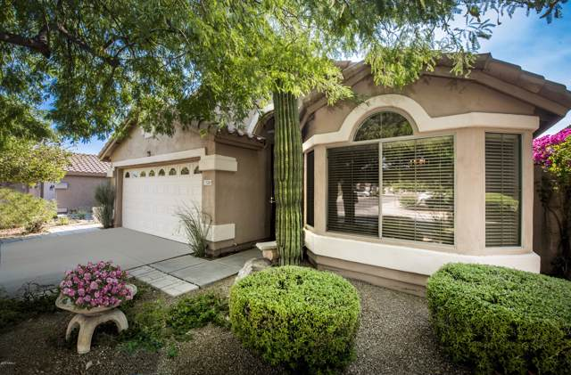 15280 N 102ND Street, Scottsdale, AZ 85255 (MLS #5926859) :: The W Group