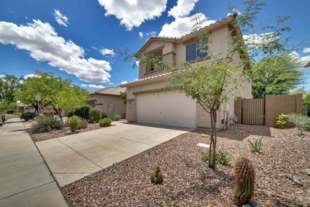 3535 W Steinbeck Court, Phoenix, AZ 85086 (MLS #5928231) :: Occasio Realty