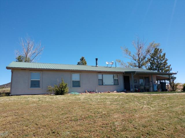 570 N Tewksbury Boulevard, Young, AZ 85554 (MLS #5928971) :: Occasio Realty