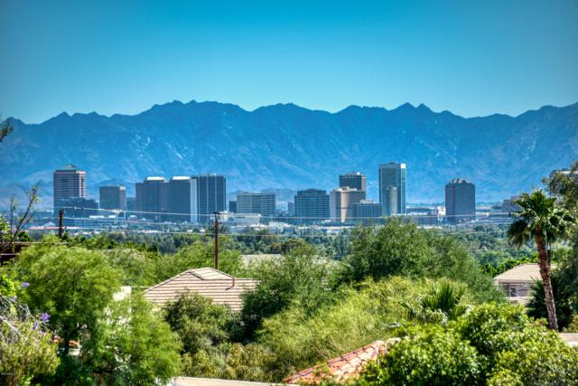 2035 E Gardenia Avenue, Phoenix, AZ 85020 (MLS #5930193) :: The Kenny Klaus Team