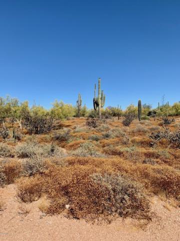 30835 N 61ST Street, Cave Creek, AZ 85331 (MLS #5930765) :: Riddle Realty