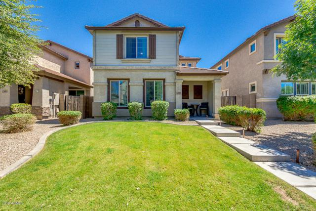 3485 E Jasper Drive, Gilbert, AZ 85296 (MLS #5930782) :: Riddle Realty