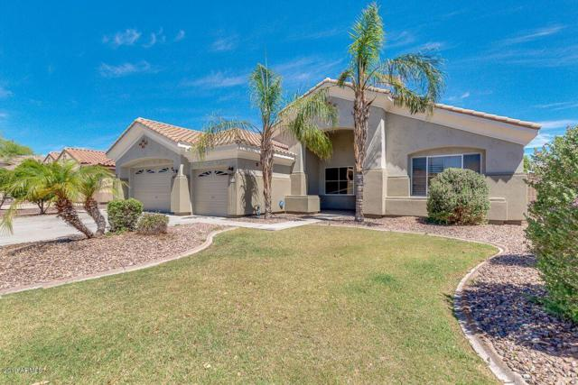 8646 W Irma Lane, Peoria, AZ 85382 (MLS #5931083) :: The Laughton Team