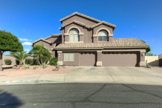 1409 N Duval Street, Mesa, AZ 85207 (MLS #5932310) :: The Everest Team at My Home Group