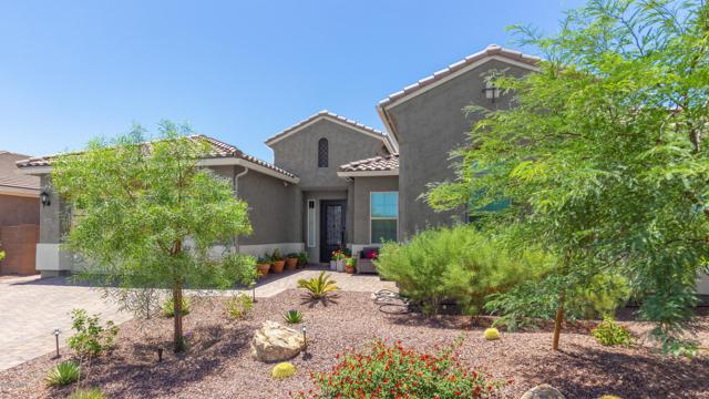 2645 W Moura Drive, Phoenix, AZ 85085 (MLS #5939946) :: Riddle Realty