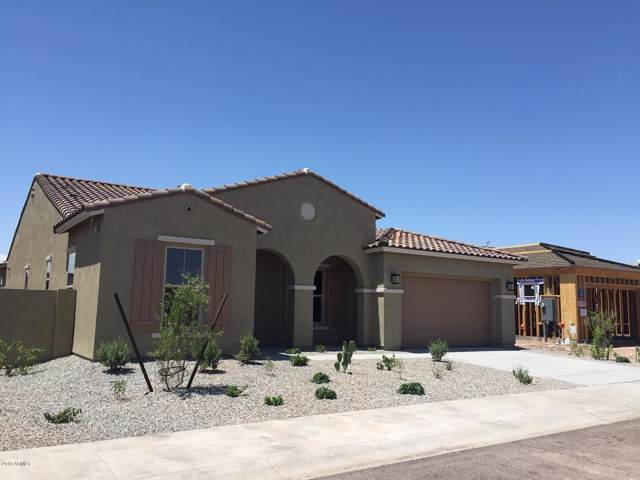 14386 S 178TH Drive, Goodyear, AZ 85338 (MLS #5940462) :: Conway Real Estate