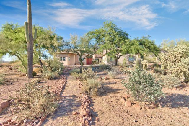 6770 E Superstition View Drive, Apache Junction, AZ 85119 (MLS #5940934) :: Lucido Agency