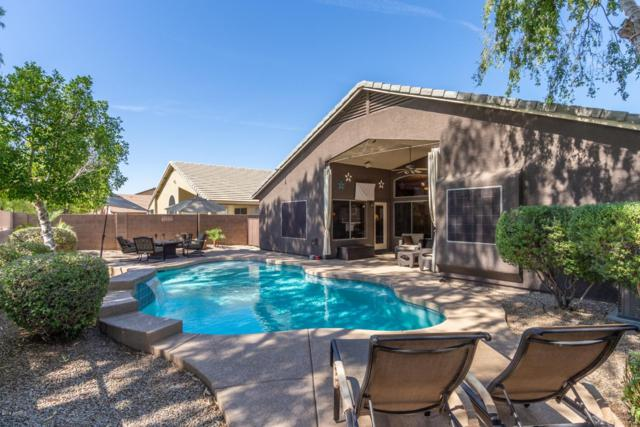 877 N 165TH Avenue, Goodyear, AZ 85338 (MLS #5941197) :: The Pete Dijkstra Team