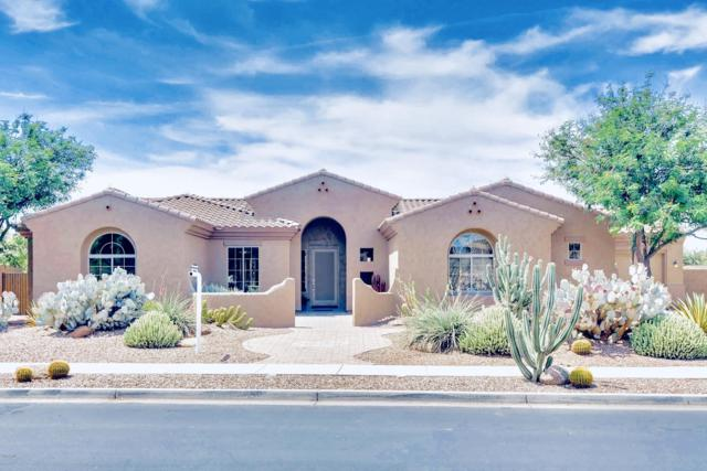 8115 W Luke Avenue, Glendale, AZ 85303 (MLS #5942878) :: CC & Co. Real Estate Team