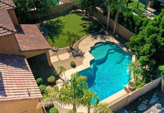 3115 E Turnberry Drive, Gilbert, AZ 85298 (MLS #5948202) :: Team Wilson Real Estate