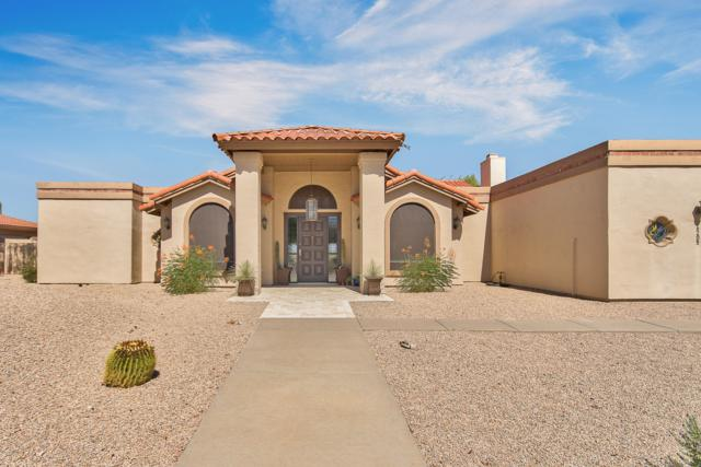 16205 N Boulder Drive, Fountain Hills, AZ 85268 (MLS #5951059) :: The W Group