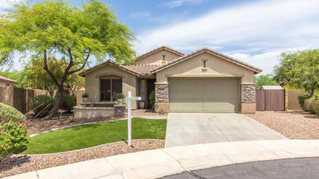 41047 N Bridlewood Court, Anthem, AZ 85086 (MLS #5951176) :: Team Wilson Real Estate