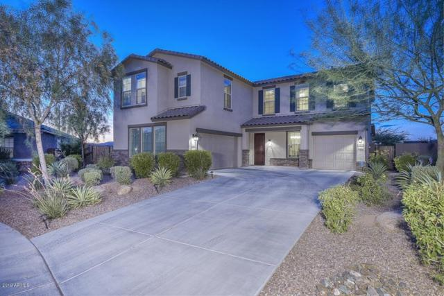 3830 W Abrams Drive, New River, AZ 85087 (MLS #5951191) :: Team Wilson Real Estate
