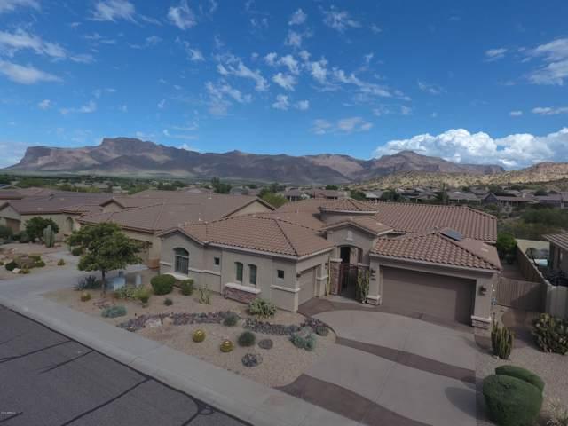4515 S Salvia Drive, Gold Canyon, AZ 85118 (MLS #5959530) :: The Kenny Klaus Team