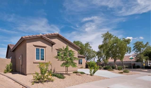2295 S 173RD Drive, Goodyear, AZ 85338 (MLS #5960485) :: Occasio Realty