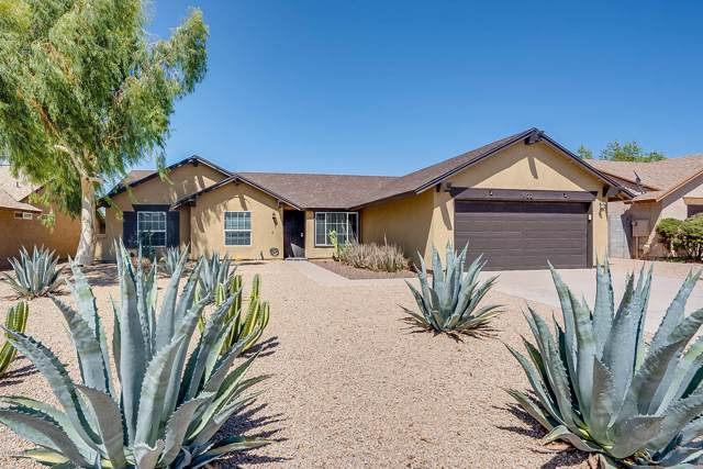 902 W Mohawk Lane, Phoenix, AZ 85027 (MLS #5966142) :: Devor Real Estate Associates