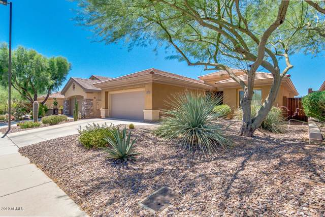 40738 N Noble Hawk Court, Phoenix, AZ 85086 (MLS #5966769) :: The Pete Dijkstra Team