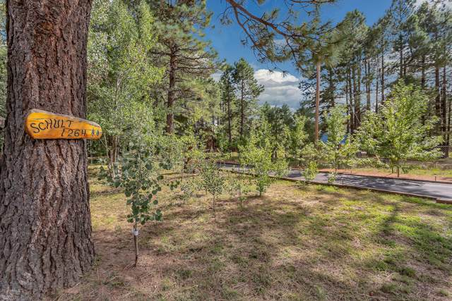 1264 Elk Drive, Forest Lakes, AZ 85931 (MLS #5972536) :: neXGen Real Estate