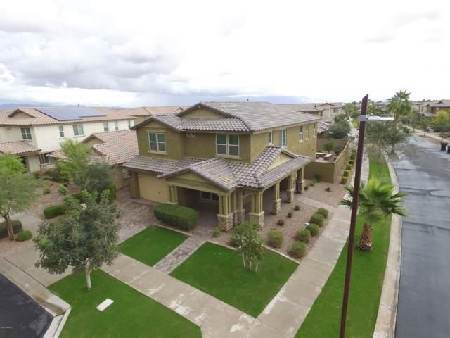 5017 S Selenium Lane, Mesa, AZ 85212 (MLS #5977221) :: The Kenny Klaus Team