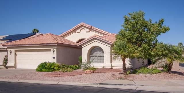 3842 N 151ST Avenue, Goodyear, AZ 85395 (MLS #5983035) :: Riddle Realty Group - Keller Williams Arizona Realty