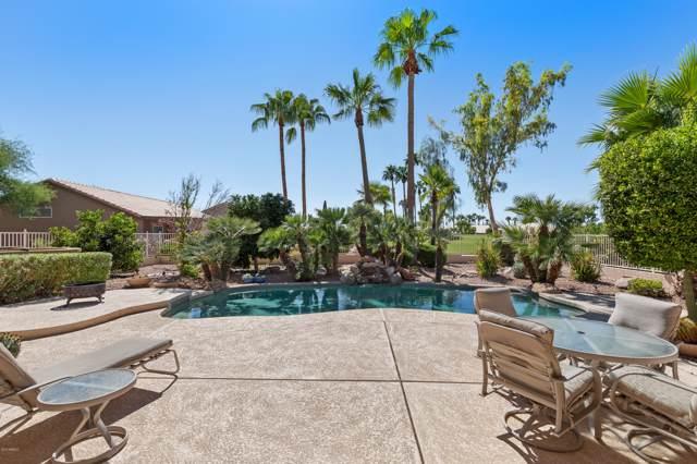 14713 W Piccadilly Road, Goodyear, AZ 85395 (MLS #5989086) :: Team Wilson Real Estate