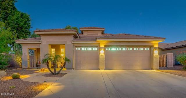 3767 S Newport Street, Chandler, AZ 85286 (MLS #5991928) :: Yost Realty Group at RE/MAX Casa Grande