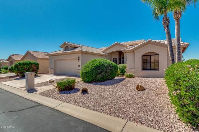 3172 N Couples Drive, Goodyear, AZ 85395 (MLS #5992407) :: Nate Martinez Team
