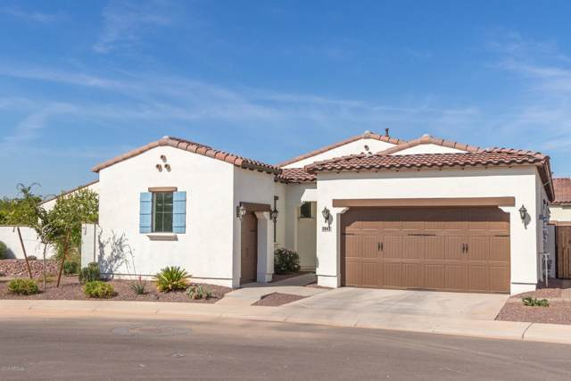 14200 W Village Parkway #2042, Litchfield Park, AZ 85340 (MLS #5993664) :: The Kenny Klaus Team