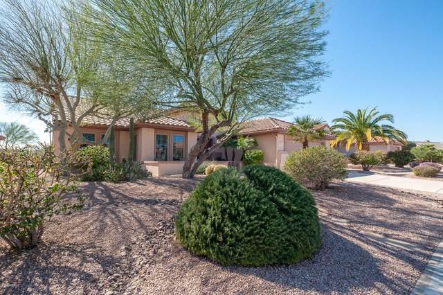 16301 W Willow Creek Lane, Surprise, AZ 85374 (MLS #5993887) :: The Garcia Group