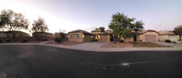 15356 W Calavar Road, Surprise, AZ 85379 (MLS #6001097) :: Revelation Real Estate
