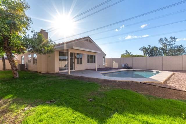 6572 W Ivanhoe Court, Chandler, AZ 85226 (MLS #6001565) :: Relevate   Phoenix