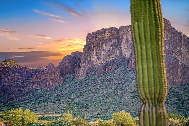 2075 N Holmes Road, Apache Junction, AZ 85119 (MLS #6004523) :: Klaus Team Real Estate Solutions