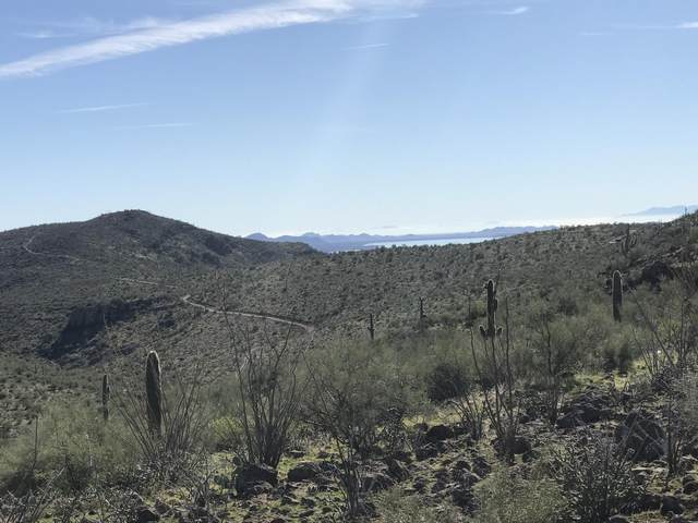 0 N Columbia Lot 76 Road, Morristown, AZ 85342 (MLS #6005812) :: Conway Real Estate