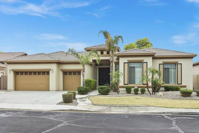 5531 S Four Peaks Place, Chandler, AZ 85249 (MLS #6007083) :: Revelation Real Estate