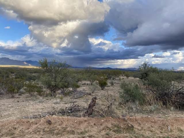 05 Buckwheat Lane, Congress, AZ 85332 (MLS #6009334) :: Riddle Realty Group - Keller Williams Arizona Realty