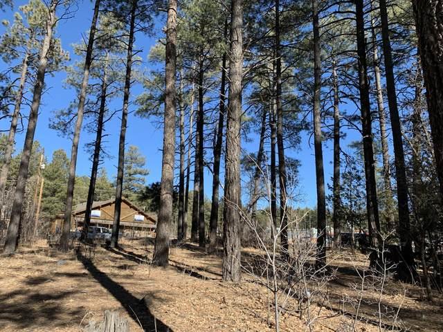 TBD White Mountain Blvd, Pinetop, AZ 85935 (MLS #6013376) :: Devor Real Estate Associates