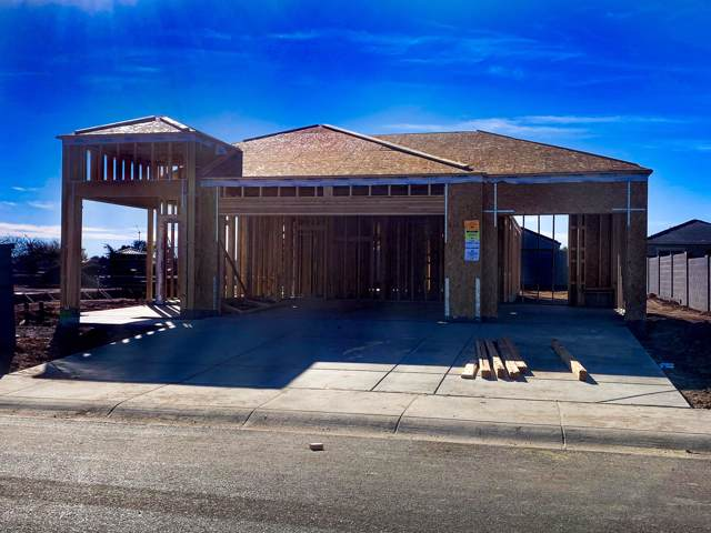 1149 E Gabrilla Drive, Casa Grande, AZ 85122 (MLS #6021188) :: The Kenny Klaus Team