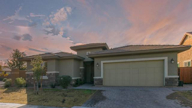 7165 E Portobello Avenue, Mesa, AZ 85212 (MLS #6024680) :: The Bill and Cindy Flowers Team