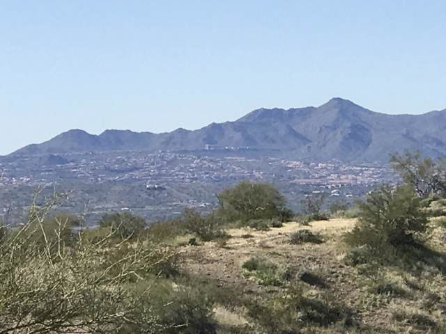 139XX N Ambush Lane, Fort McDowell, AZ 85264 (MLS #6025948) :: Midland Real Estate Alliance