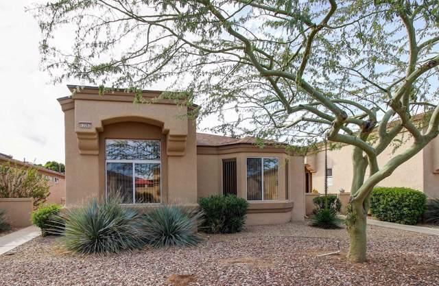 13282 W Bolero Drive, Sun City West, AZ 85375 (MLS #6028489) :: The Kenny Klaus Team