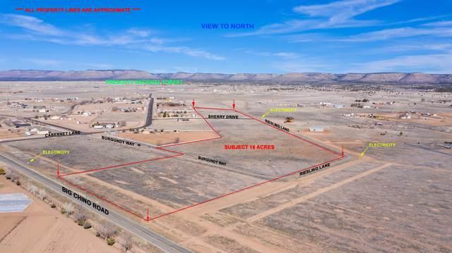 2340 W Big Chino Road, Paulden, AZ 86334 (MLS #6029860) :: Conway Real Estate