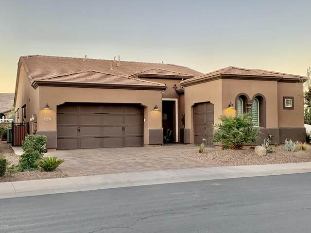 1597 E Elysian Pass, Queen Creek, AZ 85140 (MLS #6034120) :: The Laughton Team
