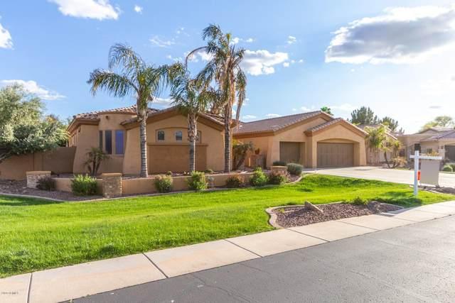 675 E County Down Drive, Chandler, AZ 85249 (MLS #6034151) :: Riddle Realty Group - Keller Williams Arizona Realty